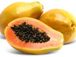 Carica papaya or Papaya Tree شجرة البابايا