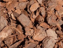 pine bark mulch