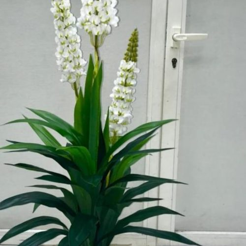 Artificial Lilly Plant