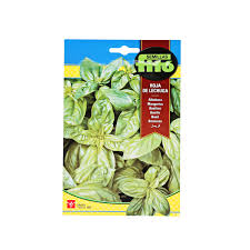 Basil Leaf of Lettuce 5g