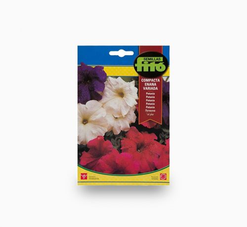 Dwarf Petunia Compact Mix Flower – Fito Seeds