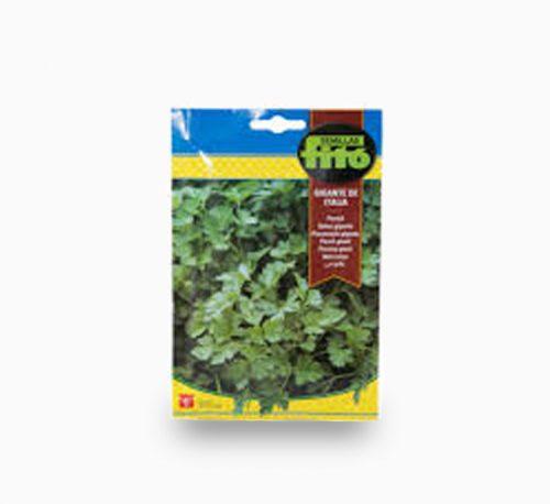 Parsley Gigante Italia Seeds 20g – Fito