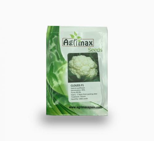 Cauliflower Clouds F1 Premium Seeds