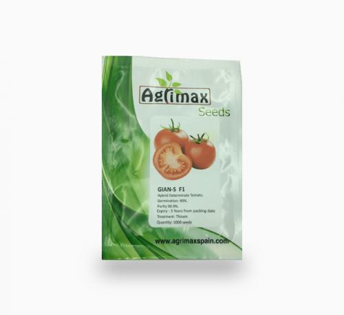 GIAN-S Hybrid Determinate Tomato 1000 Premium Quality Seeds