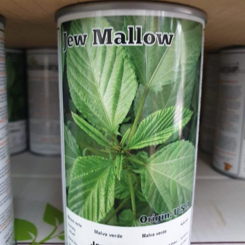 Jew Mallow seeds
