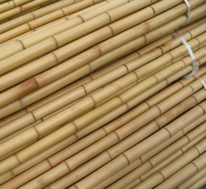 """Bamboo Stick """"Per Piece"""" 15-30mm Dia"""