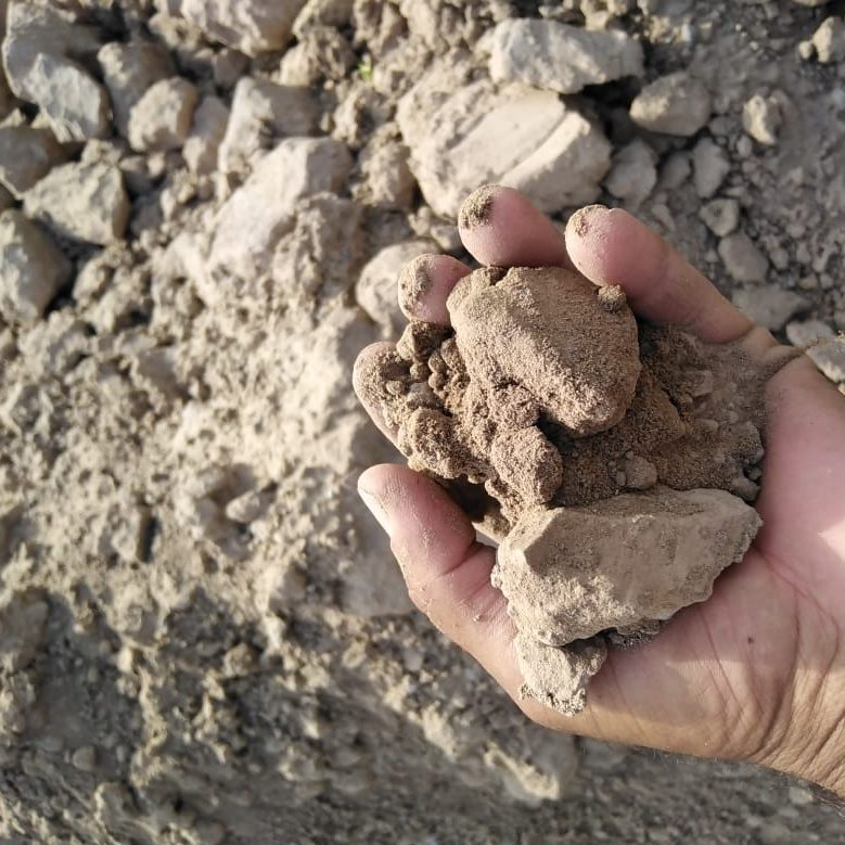 Clay or agricultural soil UAE
