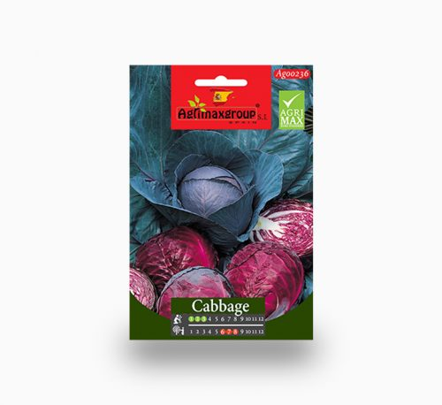 Red Cabbage Agrimax seeds