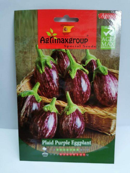 plaid purple eggplant