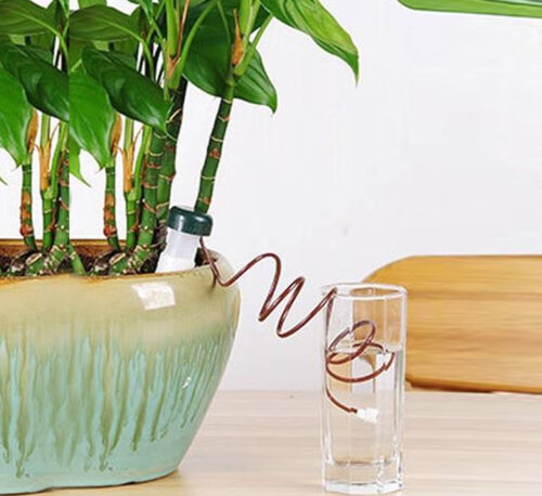 """Automatic Plant Ceramic Waterers """"set of two"""""""