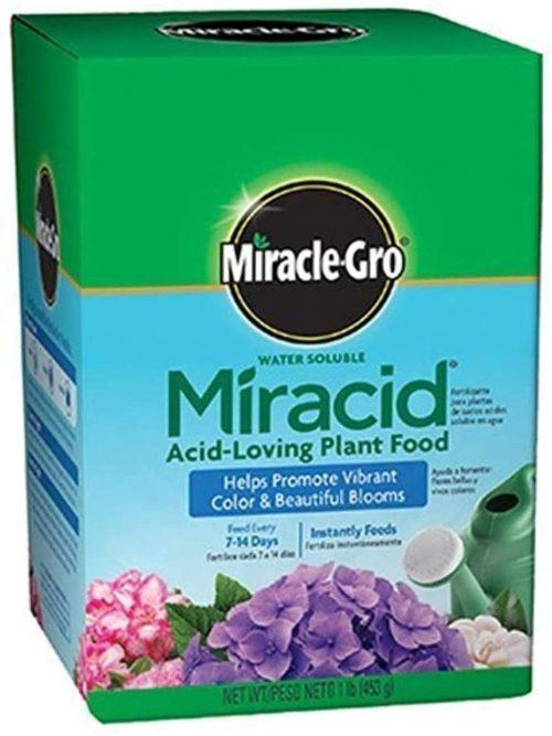 Miracle-Gro Acid-Loving Plant Food