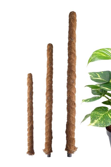 Plant Support Stick