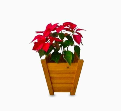 Handmade Wakhla Planter Keeper