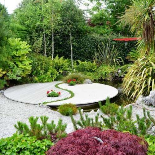 Feng Shui Outdoor Plants